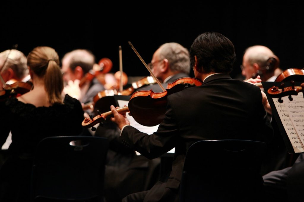 Photo of a performance of an orchestra. Taken from the back, violin players are shown.