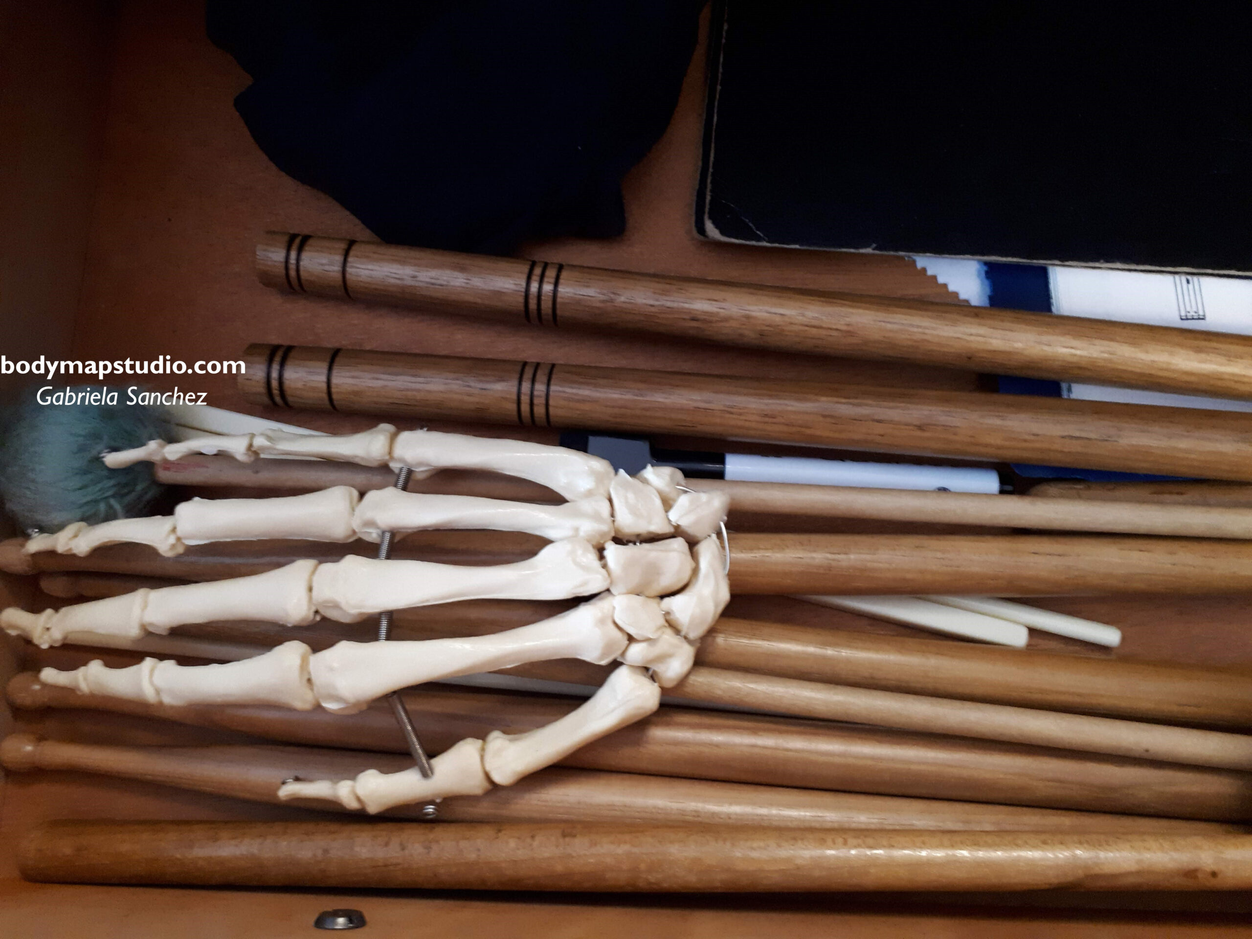 Anatomical model of the hand on top of several sticks and mallets.